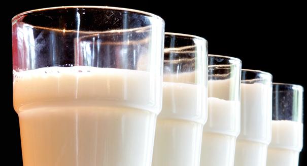 DEU Agrar Milch Preis Sonnleitner