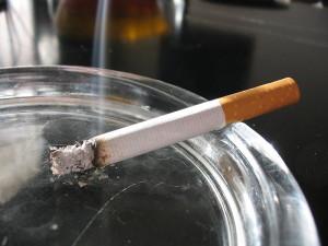 susu kambing untuk perokok
